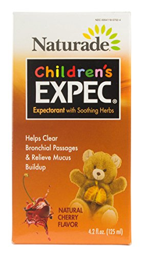 OUGH/COLD Childrens Expectorant Alcohol-Free, 4.2 oz (Products Herbal Expectorant)