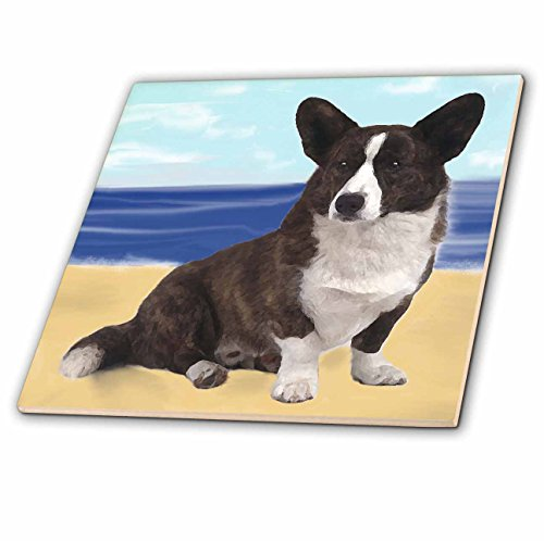 - 3dRose ct_4161_3 Cardigan Welsh Corgi Ceramic Tile, 8-Inch