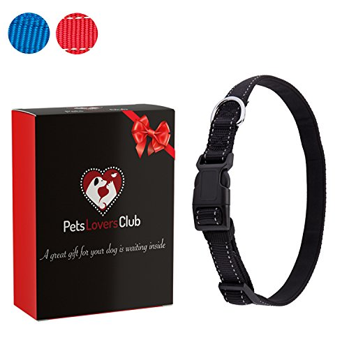 Premium Dog Collar | Reflective Lines for Safer Night Walks | Padded Webbing Protects Dogs From Rashes | Weather-proof Nylon Material Will Not Bleed Color | For Medium & Large - Hamilton Place Where Is