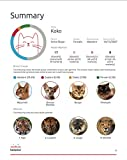 Basepaws | Cat DNA Test Kit | Breed, Health