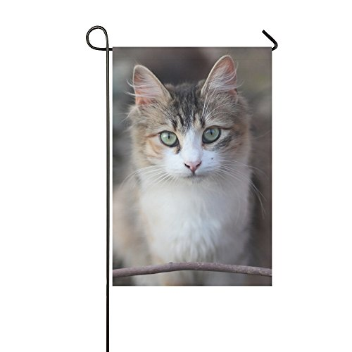 ENEVOTX Home Decorative Outdoor Double Sided Cat Coloring Pe
