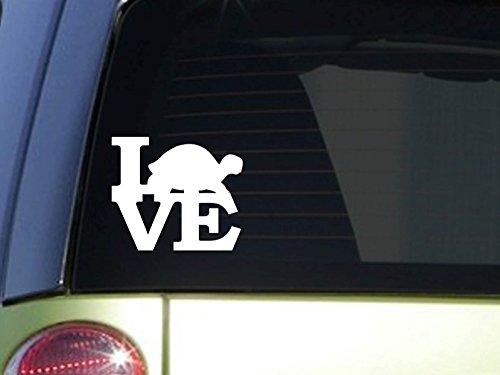 Turtle Love 6