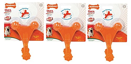(3 Pack) Nylabone Dura Chew Axis Bone Dog Chew Toy For Sale