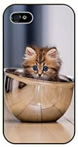 Case For Ipod Touch 4 Cover Cat in a bowl, kitty - black plastic case / Nature, Animals, Places Series