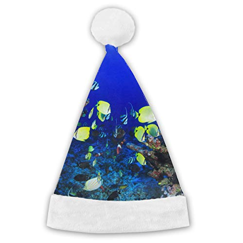 (Vicrunning Tropical Biology Blue Aquatic Colorful Fish Red and White Santa Christmas Hat)