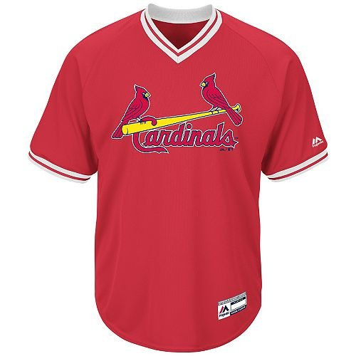 Youth Large St. Louis Cardinals BLANK BACK Major League B...