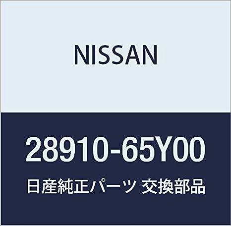 Nissan 28910 - 65y00, depósito de líquido limpiaparabrisas: Amazon ...