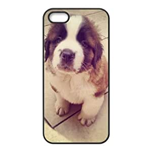 Dogs Use Your Own Image Phone Case for Iphone 5,5S,customized case cover ygtg-306984