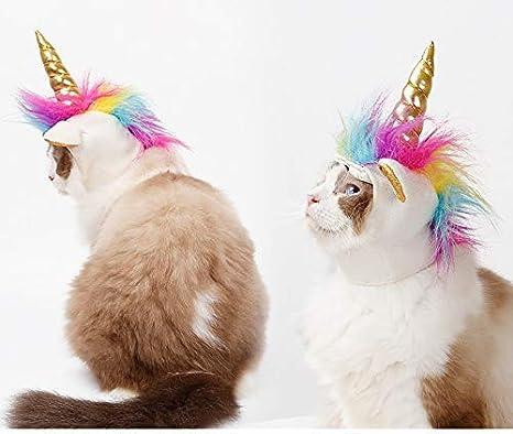 MSAI - Disfraz de Unicornio para Mascota, Gato, para Disfraz de Gato, para Disfraz, Halloween, Navidad, Fiestas: Amazon.es: Productos para mascotas