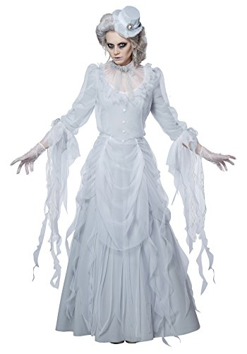 California Costumes Women's Haunting Lady Adult Woman Costume, White/Gray, Extra Large -