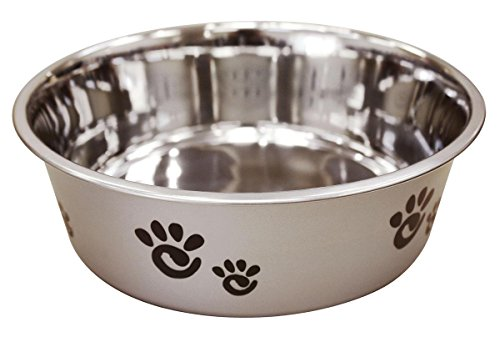 Ethical Pet Barcelona Matte and Stainless Steel Pet Dish, 64-Ounce, Silver