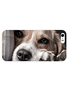 3d Full Wrap Case for iPhone 5/5s Animal Cute Beagle