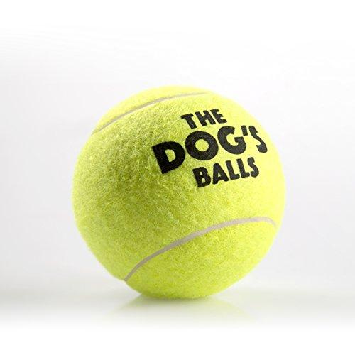 Pet Supplies The Dog S Balls 6 Premium Tennis Balls Ball For