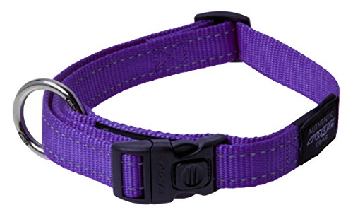 ROGZ Reflective Dog Collar for Extra Large Dogs, Adjustable from 17-27 inches, Purple