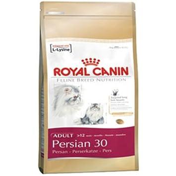 Royal Canin Persian - Pienso para gatos de raza persa 4Kg: Amazon.es: Productos para mascotas