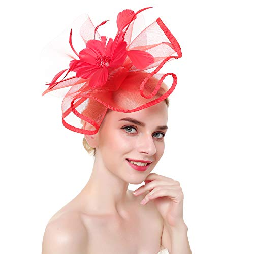 (DRESHOW Fascinators Hat Flower Mesh Ribbons Feathers on a Headband and a Clip Tea Party Headwear for Girls and Women)