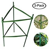 F.O.T Sturdy Garden Plant Support Stakes 3-Sets Tomato Plant Cage 2ft Long Steel with Plastic Coated Plant Sticks, With Connecting Rod (3)