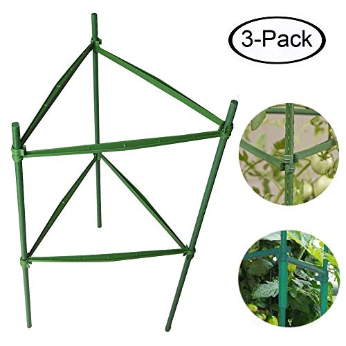 F.O.T 3-Sets Tomato Cage Plant Support Garden Stakes 2ft Long Steel with Plastic Coated Plant Sticks, Sturdy Garden Plant Support Stakes with Connecting Rod (3) by F.O.T