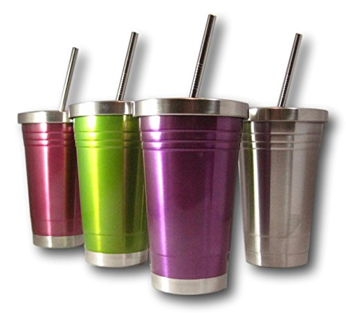 Colorful 16 Oz Stainless Steel Double Walled Insulated Tumbler and Lid and Straw by plumwood and vine (Purple)