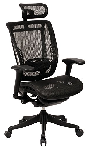 (GM Seating Enklave Executive Hi Swivel Office Chair with Headrest (Black Mesh Black Frame))