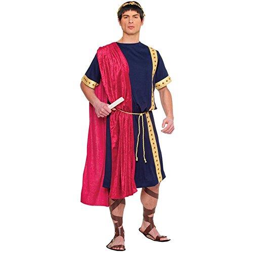 Roman Senators Costume (Costume Culture Men's Roman Senator Costume, Blue, Standard)