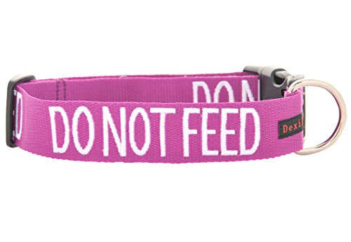 Do Not Feed Purple Color Coded S M L XL Buckle Dog Collars Prevents Accidents By Warning Others of Your Dog in Advance (L-xl Collar 15-25