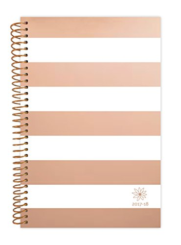 "bloom daily planners 2017-18 Academic Year Daily Planner - Passion/Goal Organizer - Monthly and Weekly Datebook and Calendar - August 2017 - July 2018 - 6"" x 8.25"" - Rose Gold Stripes"