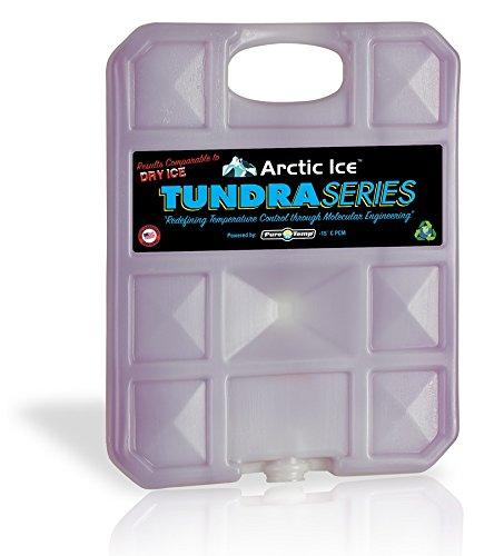 Arctic Ice Chillin Brew Series wiederverwendbar K/ühler Pack