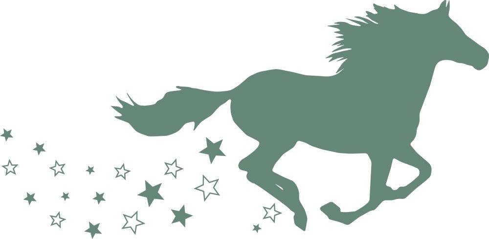 GRAZDesign 300053_57_WT010 Wandtattoo Wandaufkleber Tattoo für Mädchenzimmer Mädchenzimmer Mädchenzimmer Pferd galoppieren Sterne (116x57cm    010 Weiss) B07CNT7CXJ Wandtattoos & Wandbilder 239ff6