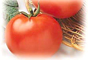 The Dirty Gardener Heirloom Rutgers Tomato, 50 Seeds