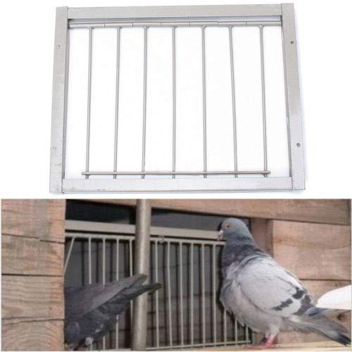 FidgetGear Iron Door Bob Wires Bars on Frame Entrance Tumbler for Racing Pigeon Loft Bird   by FidgetGear