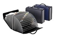 Pendaflex 26 Pocket Carry Case, Letter, Smoke (1132)