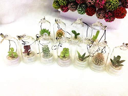 Kucus - (20pcs/lot) Mini Cactus, Mini Plant Baby,Angel Greenhouse,Carry Farm,Plant Pendant,Radiation Protection,Pet Flower - (Color: 25X45mm)