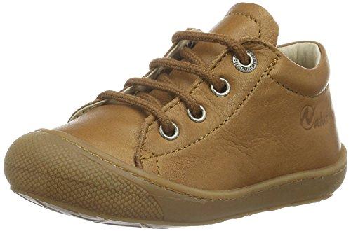 3972 Marron Cuir Marche Mixte Chaussures Bébé Naturino HxdRqanR