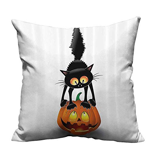 (YouXianHome Zippered Pillow Covers Black Cat Pumpkin Head Spooky Carto Characters Halloween Humor Themed Decorative Couch(Double-Sided Printing) 20x20)
