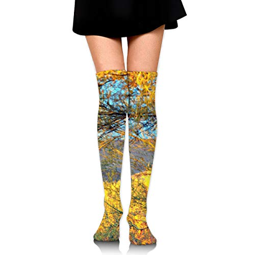 Tonto Mountains Female Ladies Women Girl Teen Kid Youth Leg Tall Mid Thigh High Knee Long Tube Over The Knee Stocking Costume Gifts Clothes Dresses Apparel Thy Thi Hi -