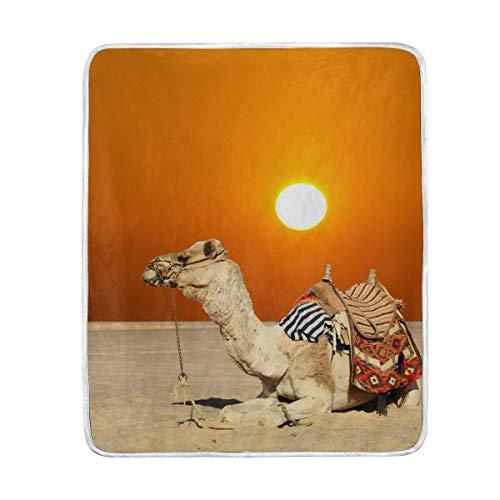 DOSHINE Couvre-lit Couverture, Animal Camel Coucher de Soleil Tropical Doux léger Warmer couvertures 127 x 152,4 cm pour canapé lit Chaise de Bureau