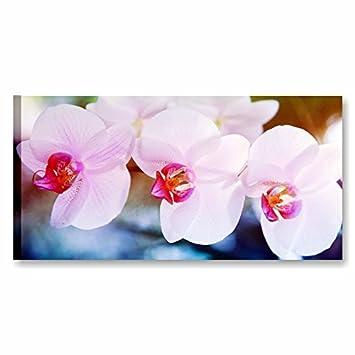 Quadri L&C ITALIA | Tris Orchidea Rosa, Quadro con Fiori 90 x 45 cm ...