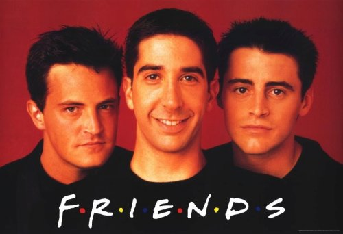 Click for larger image of Friends (TV) (1994) 11 x 17 TV Poster - Style D
