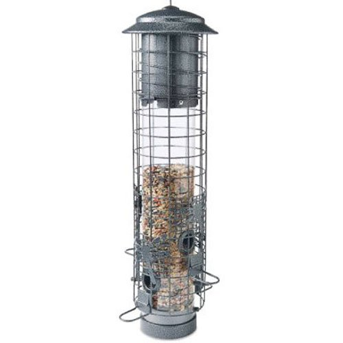 (Audubon NA32431 Dragonfly Squirrel-Resistant Tube Bird Feeder)