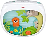 Fisher-Price Settle & Sleep Projection Soother