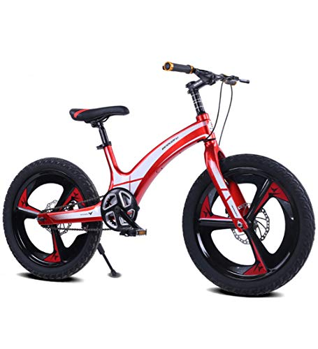 Aon-MX Kids' Bikes 20'' Children's Bikes, Boy Speed Bikes 10-15 Years Old, Mountain Bikes, Multiple Colour Gift for Boys and Girls,E