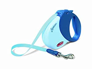 Flexi Expression Retractable Belt Dog Leash, Medium/Large, 16-Feet Long, Supports up to 77-Pound, Blue