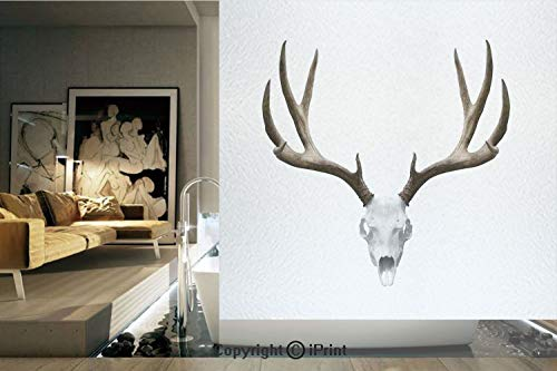 Ylljy00 Decorative Privacy Window Film/A Deer Skull Skeleton Head Bone Halloween Weathered Hunter Collection Decorative/No-Glue Self Static Cling for Home Bedroom Bathroom Kitchen Office Decor]()