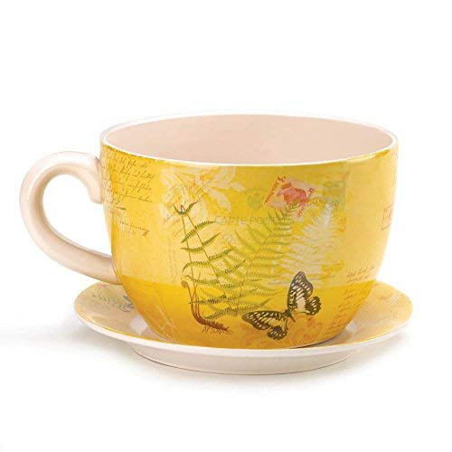 Decor and More Store 10016838 Style Pot Cup and Saucer with Drain Hole Large Garden Butterfly Teacup Planter ()