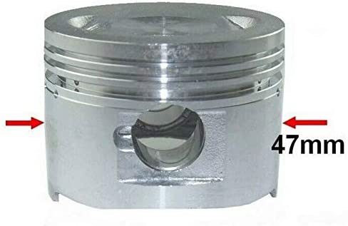 80ccm Racing Zylinder KIT Set VERGASER Satz f/ür REX Milano 50 Luft Zylinderkit Unbranded