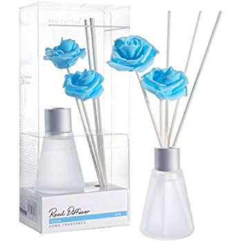 Amazon.com: Rose Cottage 30ml Ocean Reed Diffuser Set with