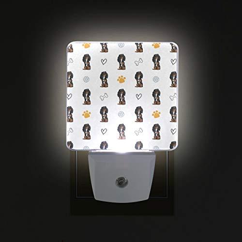 Plug in LED Night Light Cavalier King Charles Spaniel Dog Lamp with Dusk to Dawn Sensor for Kitchen Hallway Bedroom Bathroom, 2 Pack