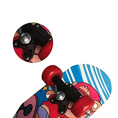 Aniseed Skateboards Cruiser Decks Complete Skate Beginner Skateboard 24 Inches Fierce Tiger : Sports & Outdoors