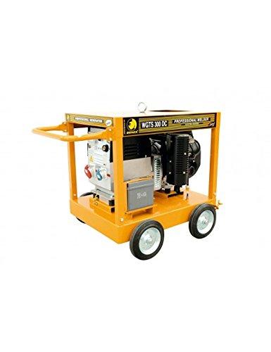 MOTOSOLDADOR TRIFASICO WGTS 310 DC: Amazon.es: Bricolaje y herramientas
